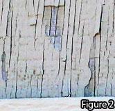 Storm Damage Figure 2